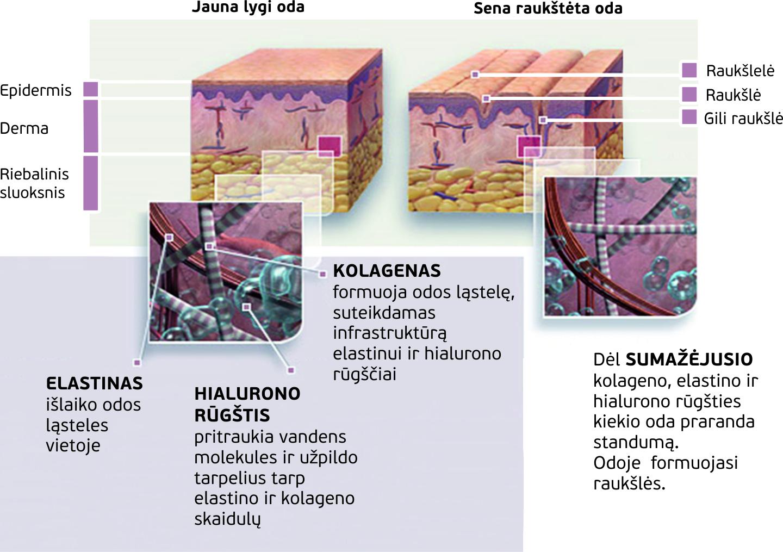 Dr.OHHIRA kolagenas